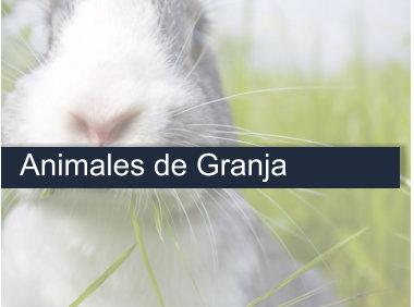 Curso Auxiliar de Veterinaria Animales de Granja