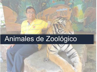Curso Auxiliar de Veterinaria Animales de Zoológico